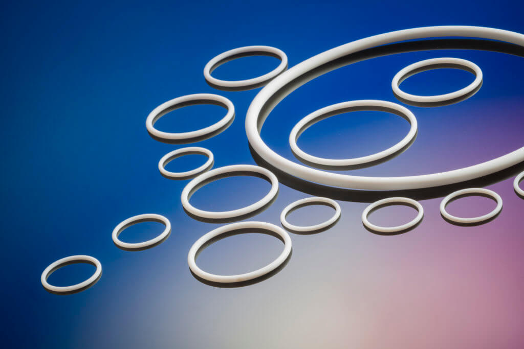 PTFE Oring seals Pagnoni srl, made in Italy |